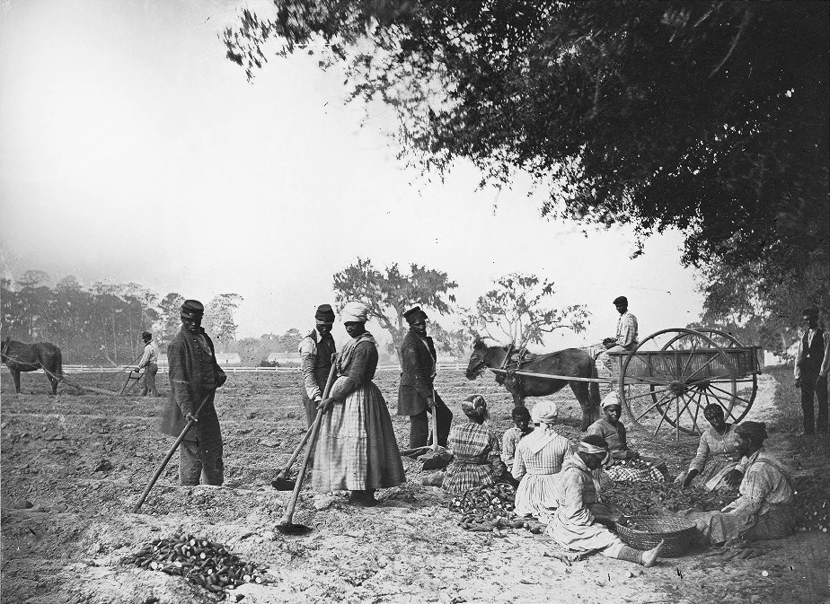 African American men and women work on a southern plantation, 1862