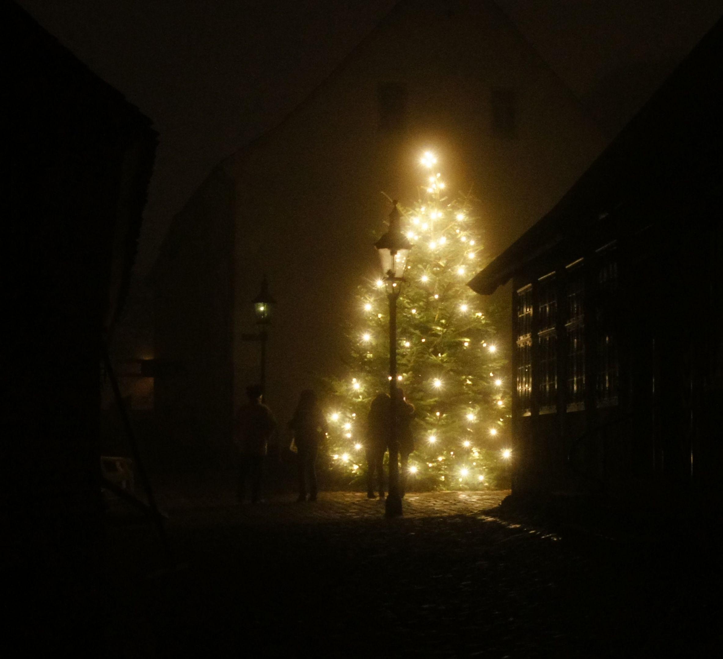 juletræssalg aarhus