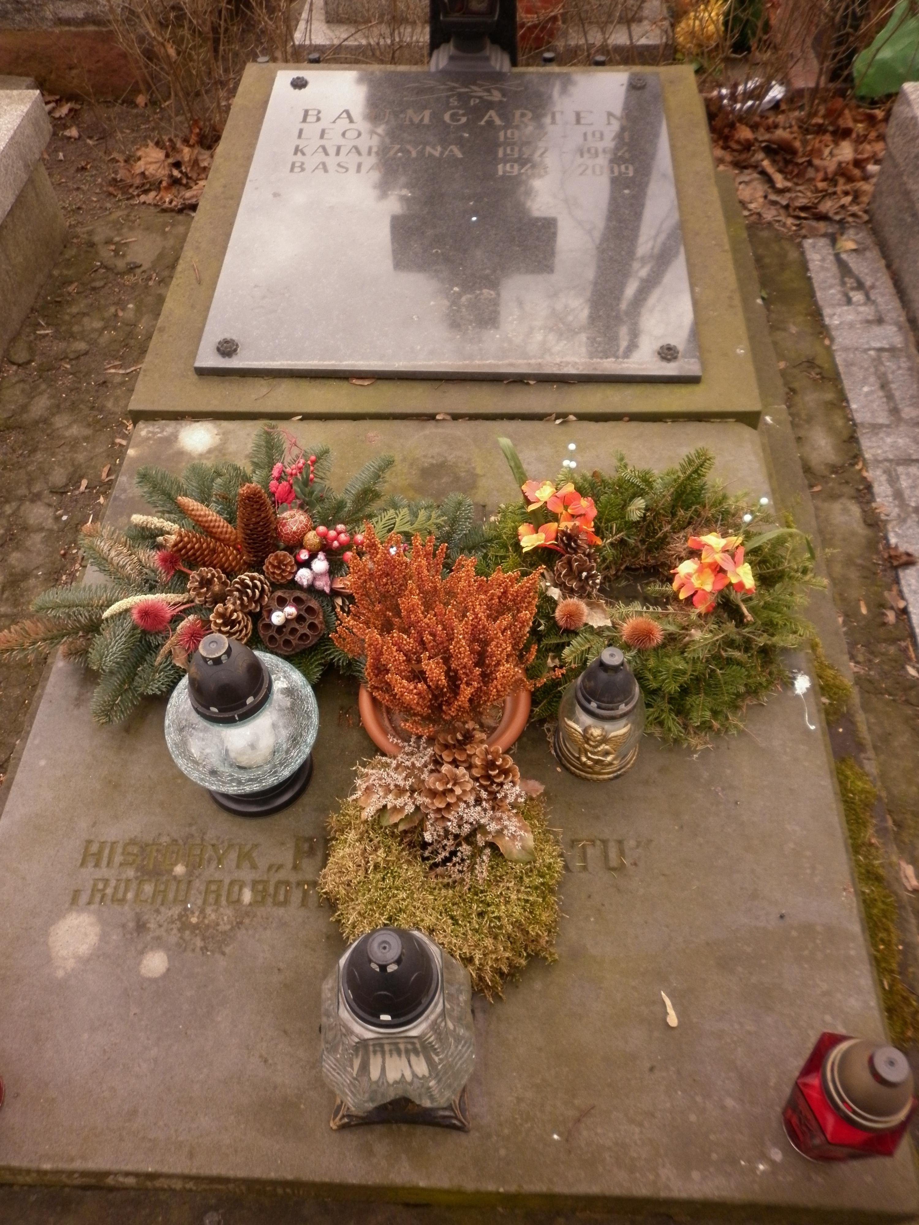Leon baumgarten wikiwand for Baum garten