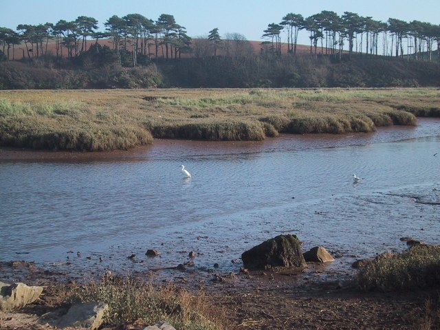 Mudflats at the Mouth of the Otter - geograph.org.uk - 932862