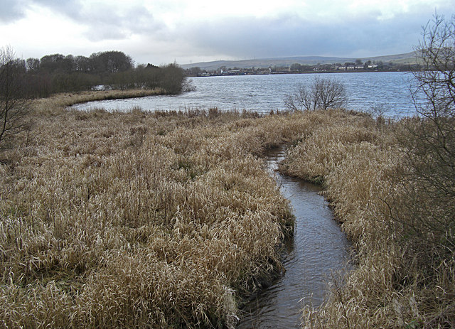 Nature Reserve at Hollingworth Lake - geograph.org.uk - 1132169