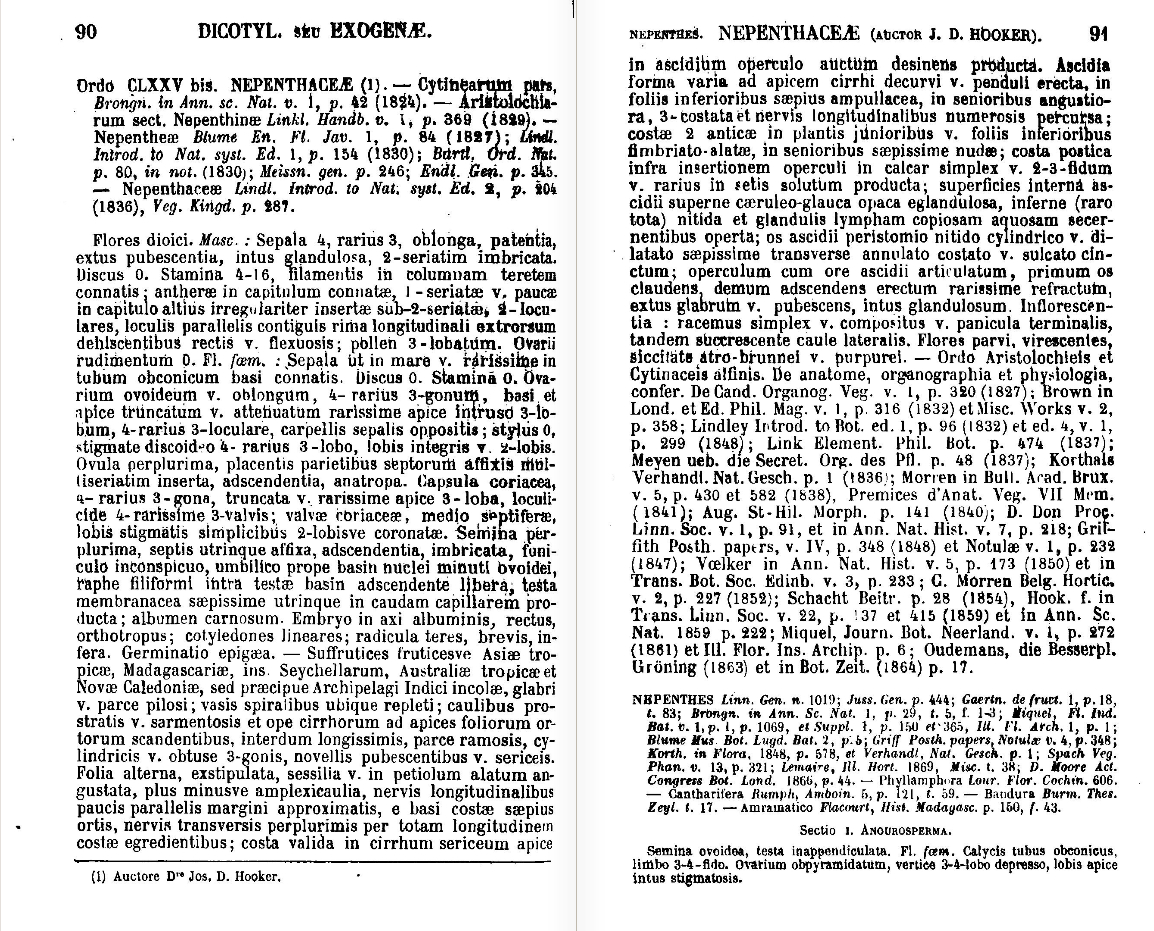 Nepenthaceae (1873 monograph) - Wikipedia