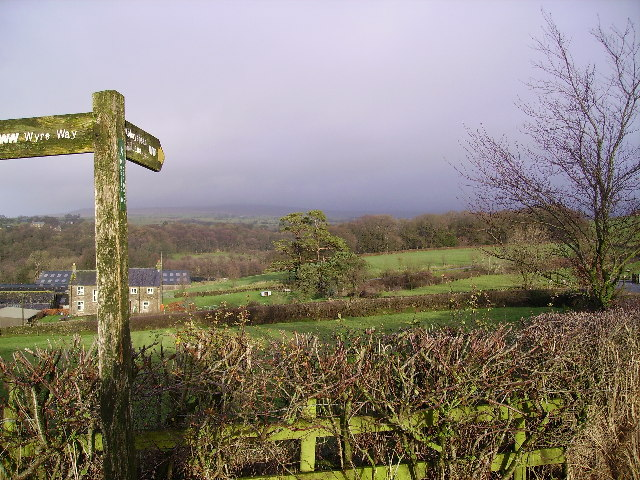 On the Wyre Way - geograph.org.uk - 98085