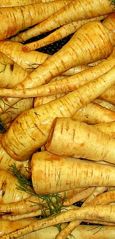File:Parsnips-1.jpg