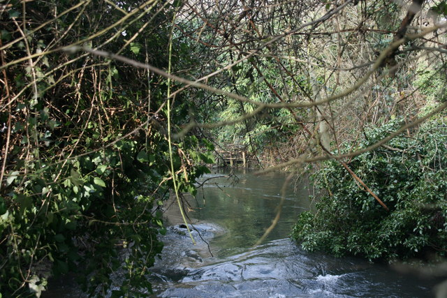 River Darent - geograph.org.uk - 1720419
