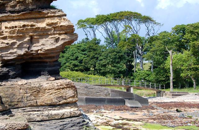 Rock strata at Howick Dene - geograph.org.uk - 1369595