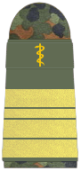 SanM 261-Flottillenarzt-(Humanmedizin).png