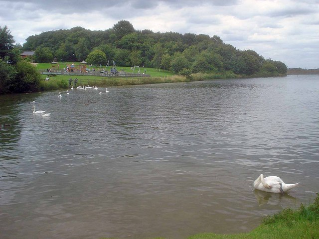 Small bay of Staunton Harold Reservoir - geograph.org.uk - 1431472