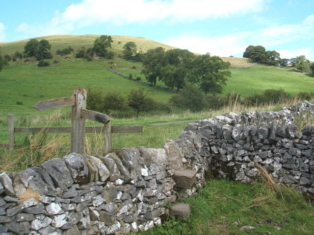 Stile at junction of footpath and Green Lane - geograph.org.uk - 1460899
