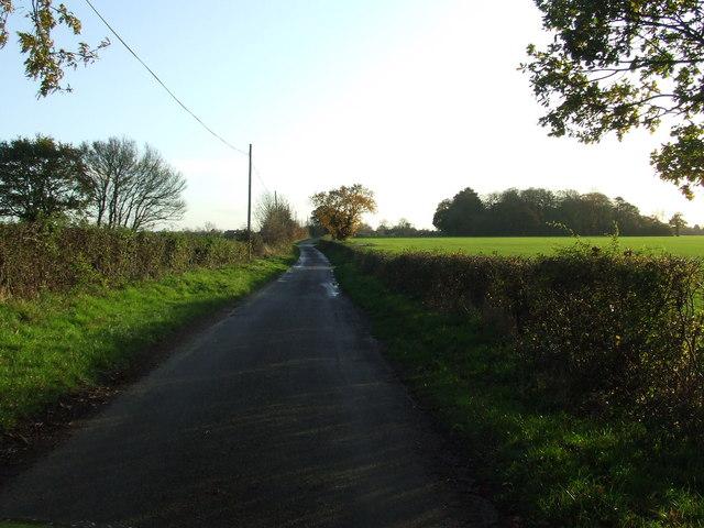 File:Sunny Road - geograph.org.uk - 1582920.jpg