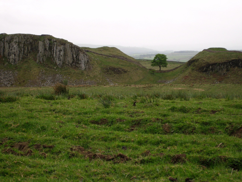El arcón de Barsine Sycamore_Gap,_distant_view_1