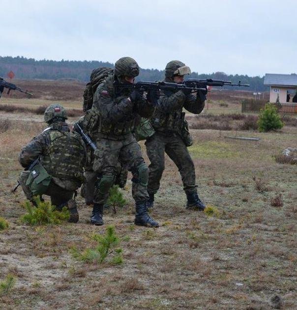 Szwadron_Kawalerii_Powietrznej.jpg