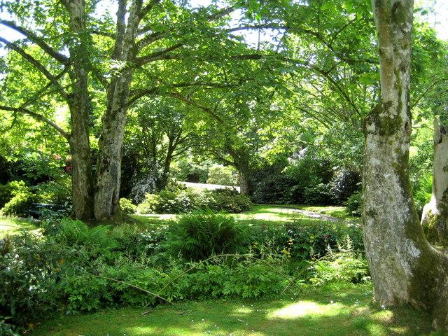 The garden - Lanhydrock - geograph.org.uk - 1351015