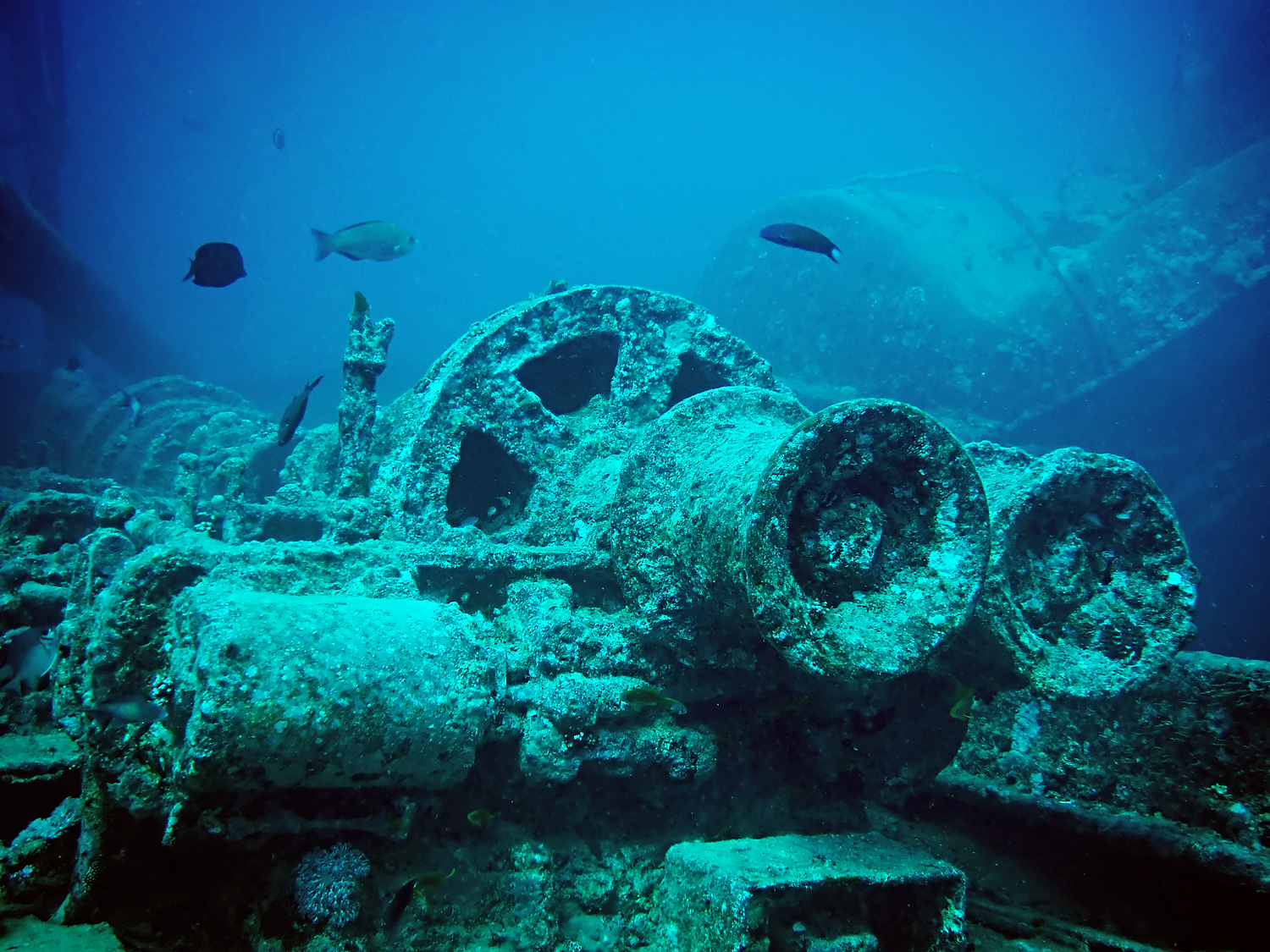 [Image: Thistlegorm_train_parts_minus_red_edit.jpg]