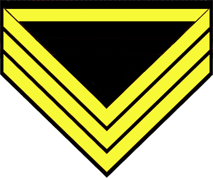 File:US Company Quartermaster Sergeant Chevrons - Cavalry.png ...