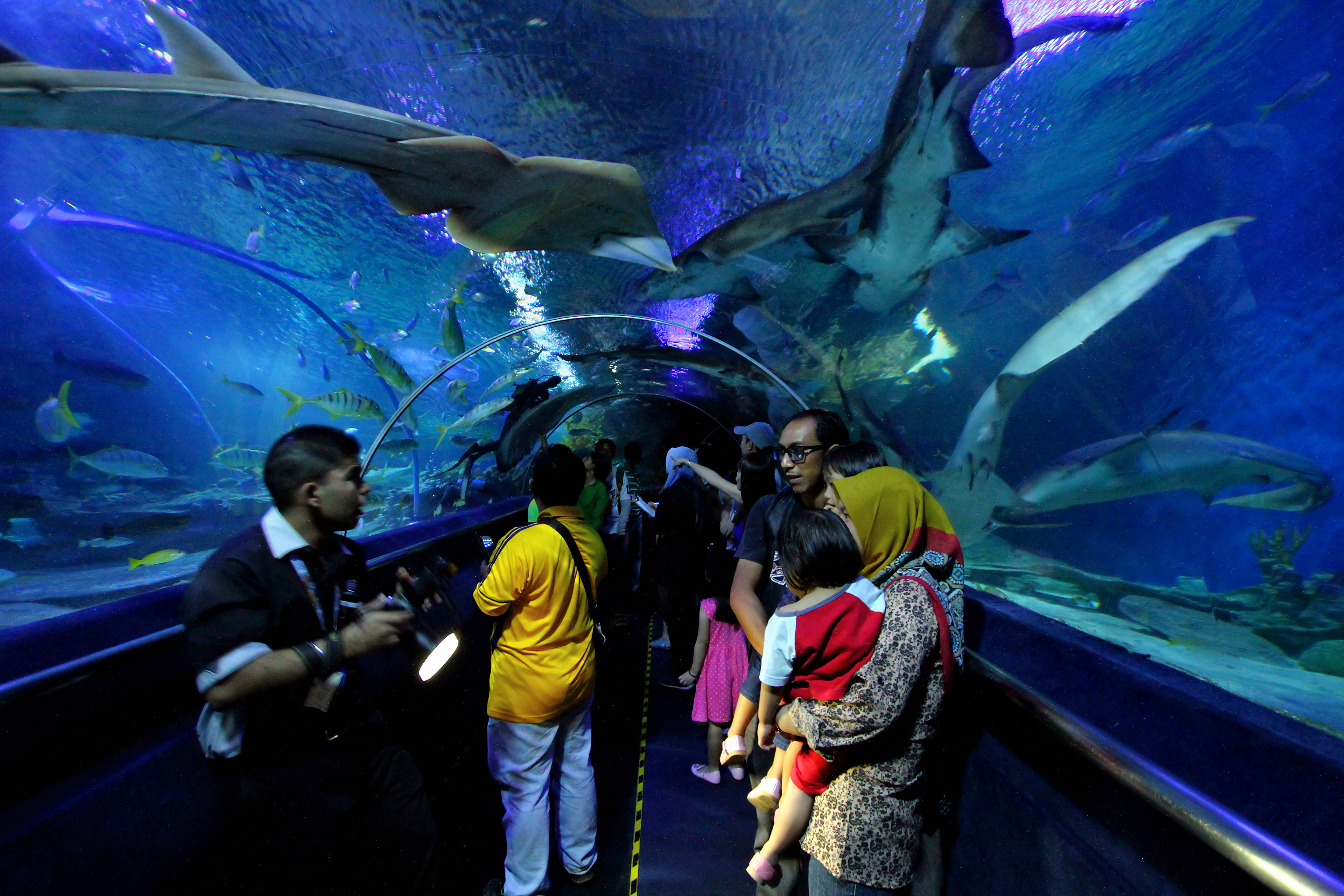 aquaria klcc essay
