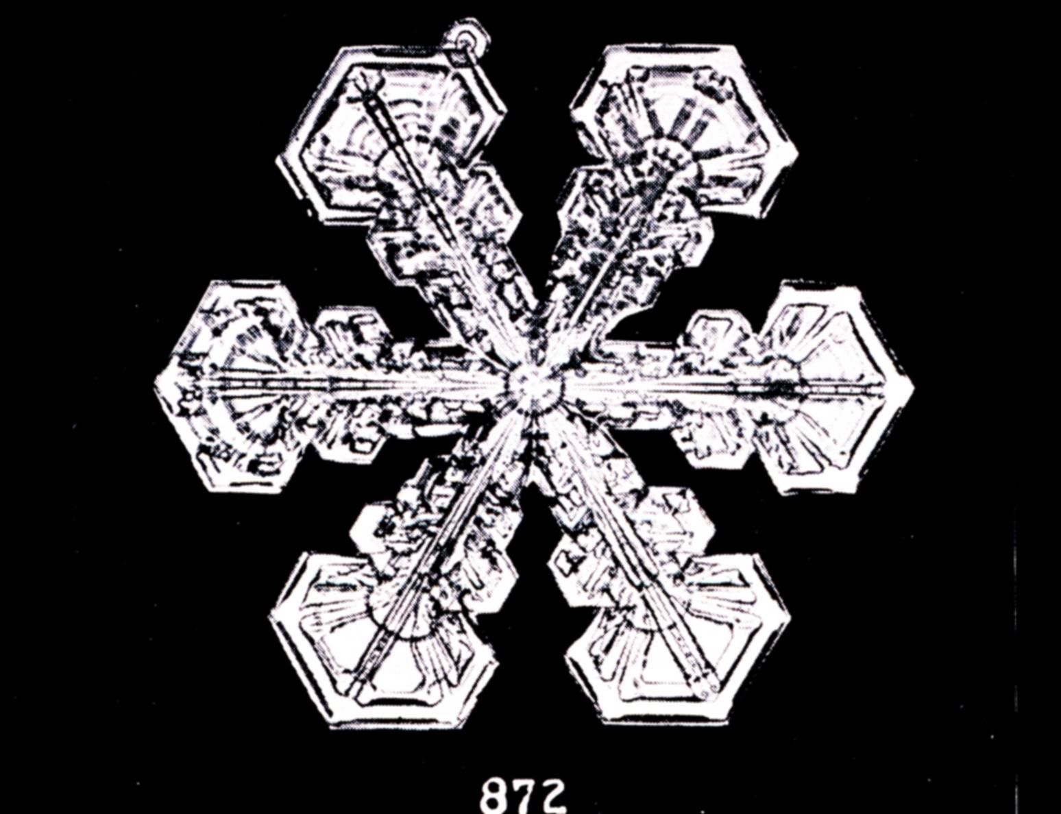 File Bentley Snowflake 872 Jpg Wikimedia Commons