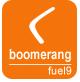 Boomerang logo 80x82 ver2.jpg