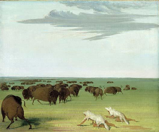 File:BuffaloHunters.jpg