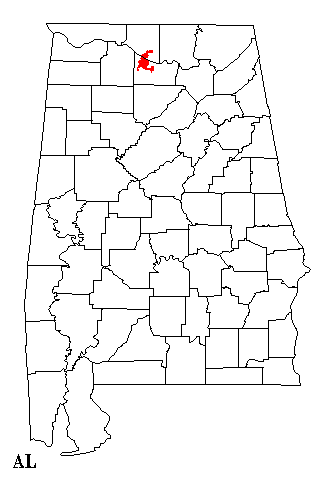 File:Decatur Alabama map.png - Wikimedia Commons