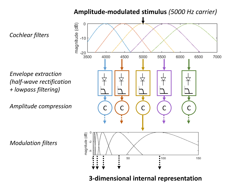 Diagram_of_the_envelope_perception_model file diagram of the envelope perception model jpg wikimedia commons