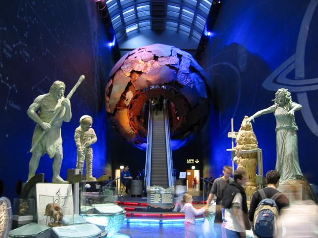 Natural History Museum Free Entrance