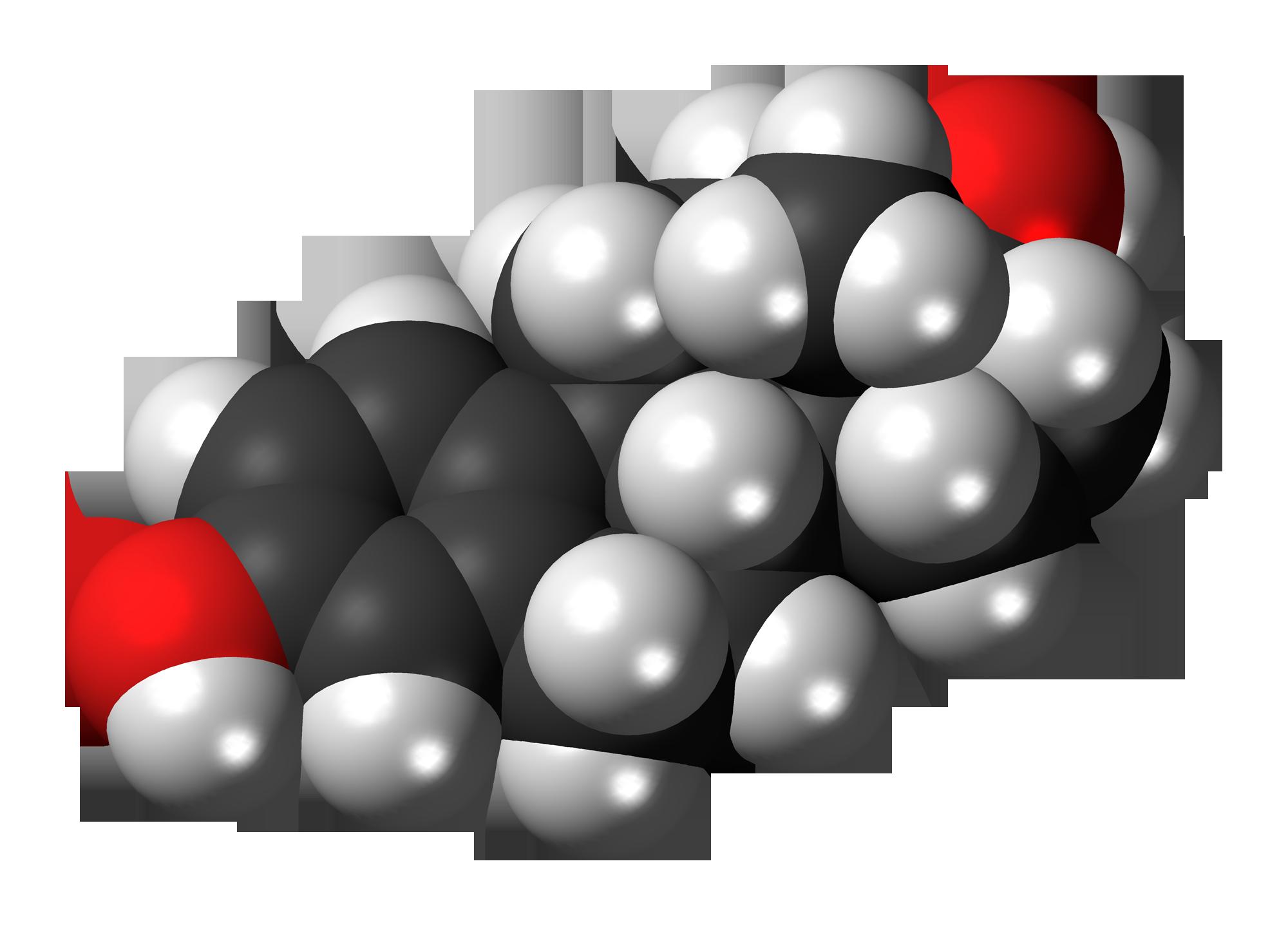free testosterone wiki