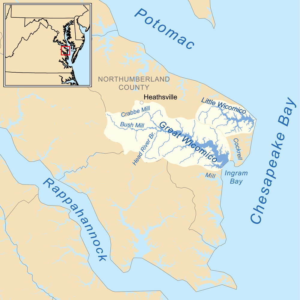Little Wicomico River Wikipedia