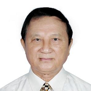 Nguyễn Hồng Giáp Vietnamese scholar (born 1934)