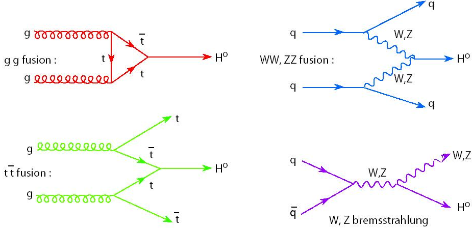 File Higgs Production Gg Qq Png Wikipedia