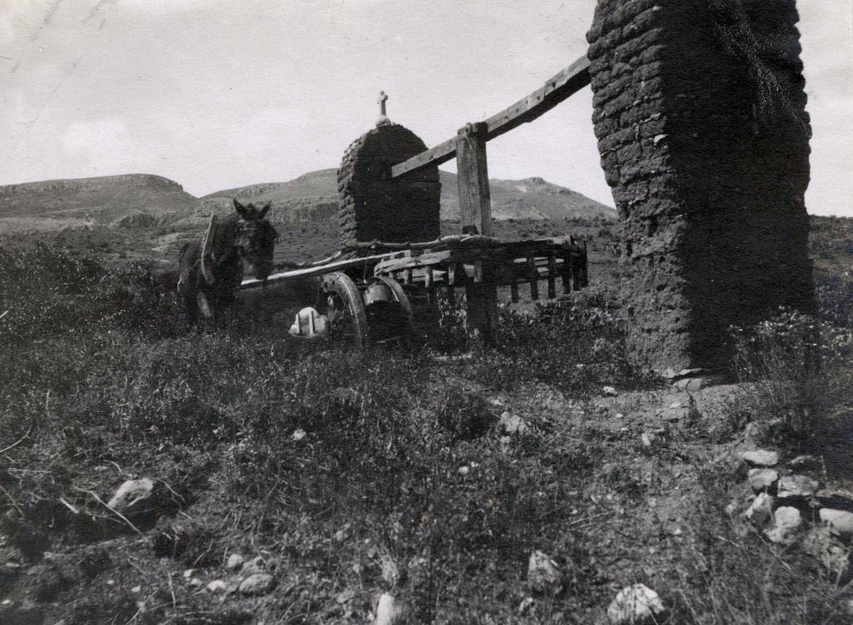file irrigation near zacatecas  mexico c  1900 jpg