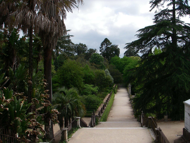 FileJardim Botânico da Universidade de Coimbra, incluindo cercajpg