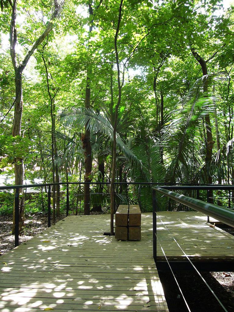 Salon de jardin botanic - Salon jardin botanic ...