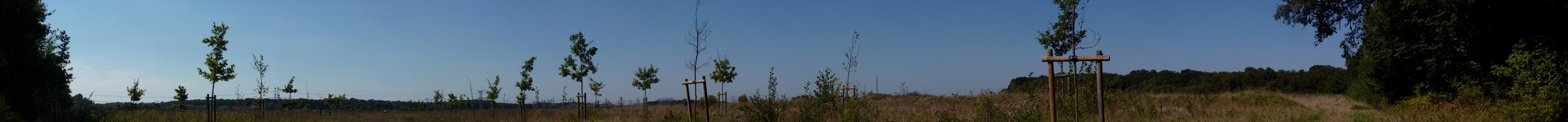 Large panorama de la prairie