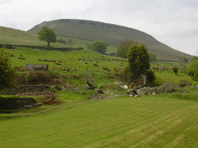 Musbury Tor from Park Road - geograph.org.uk - 1303936