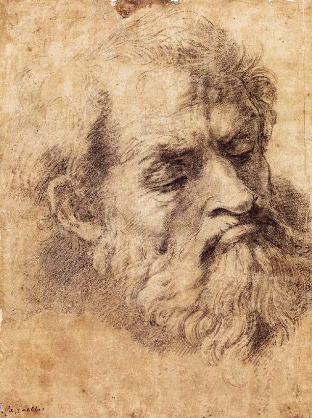 Etude d'une tête (1520) d'apôtre par Raphael au musée du Vatican.