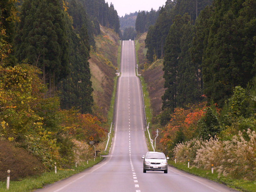 A hilly road that roars straight through the forested countryside