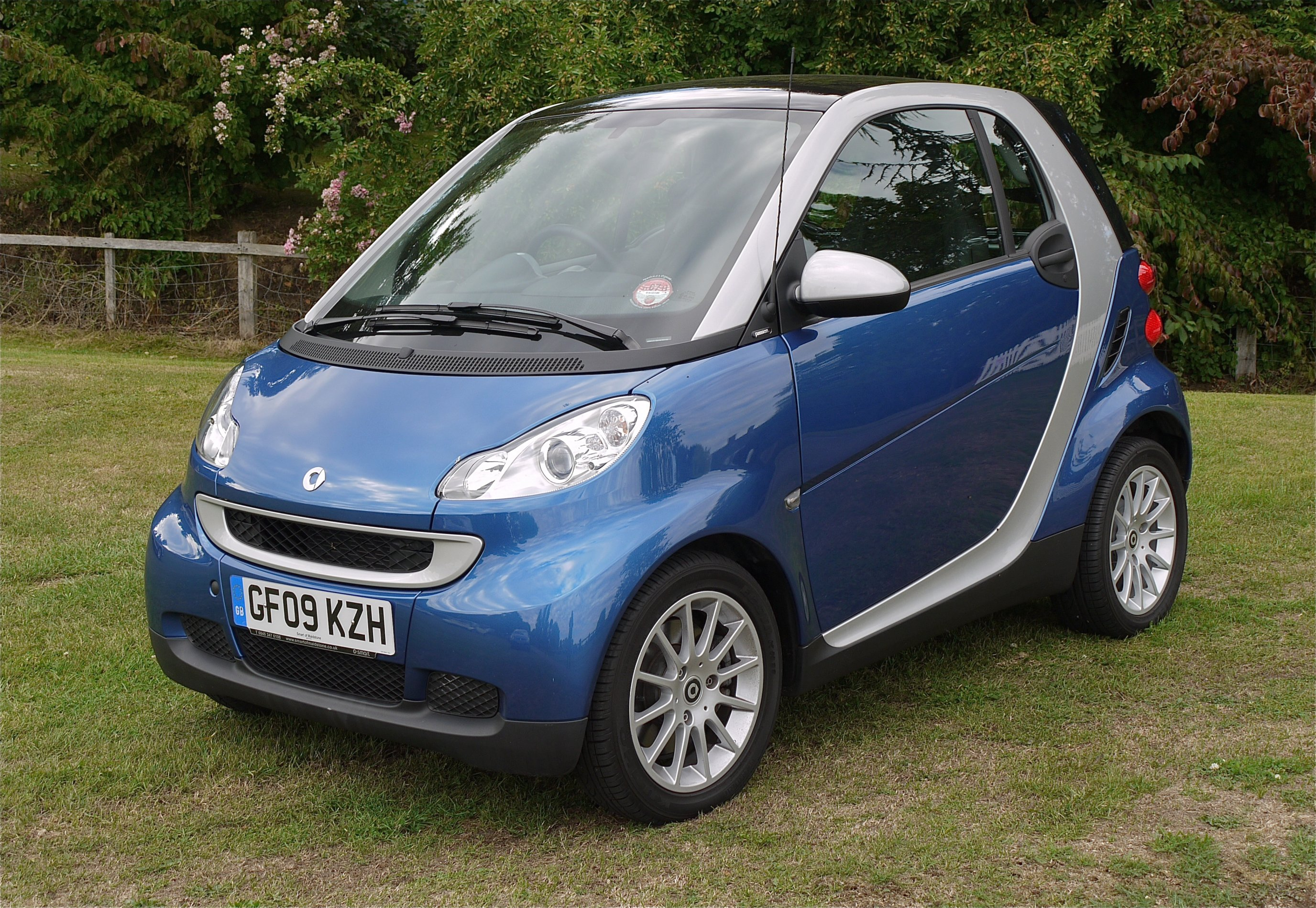 File:Smart Car, are they easy to park on the door handles