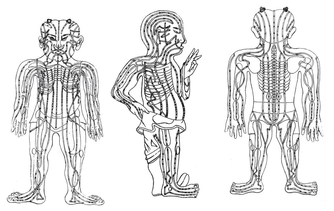 specimen-medicinae-sinicae.jpg