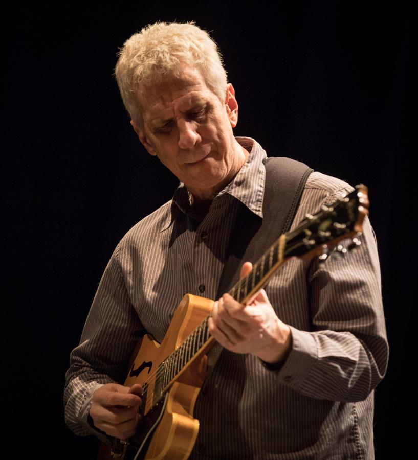 Steve Cardenas (musician) - Wikipedia