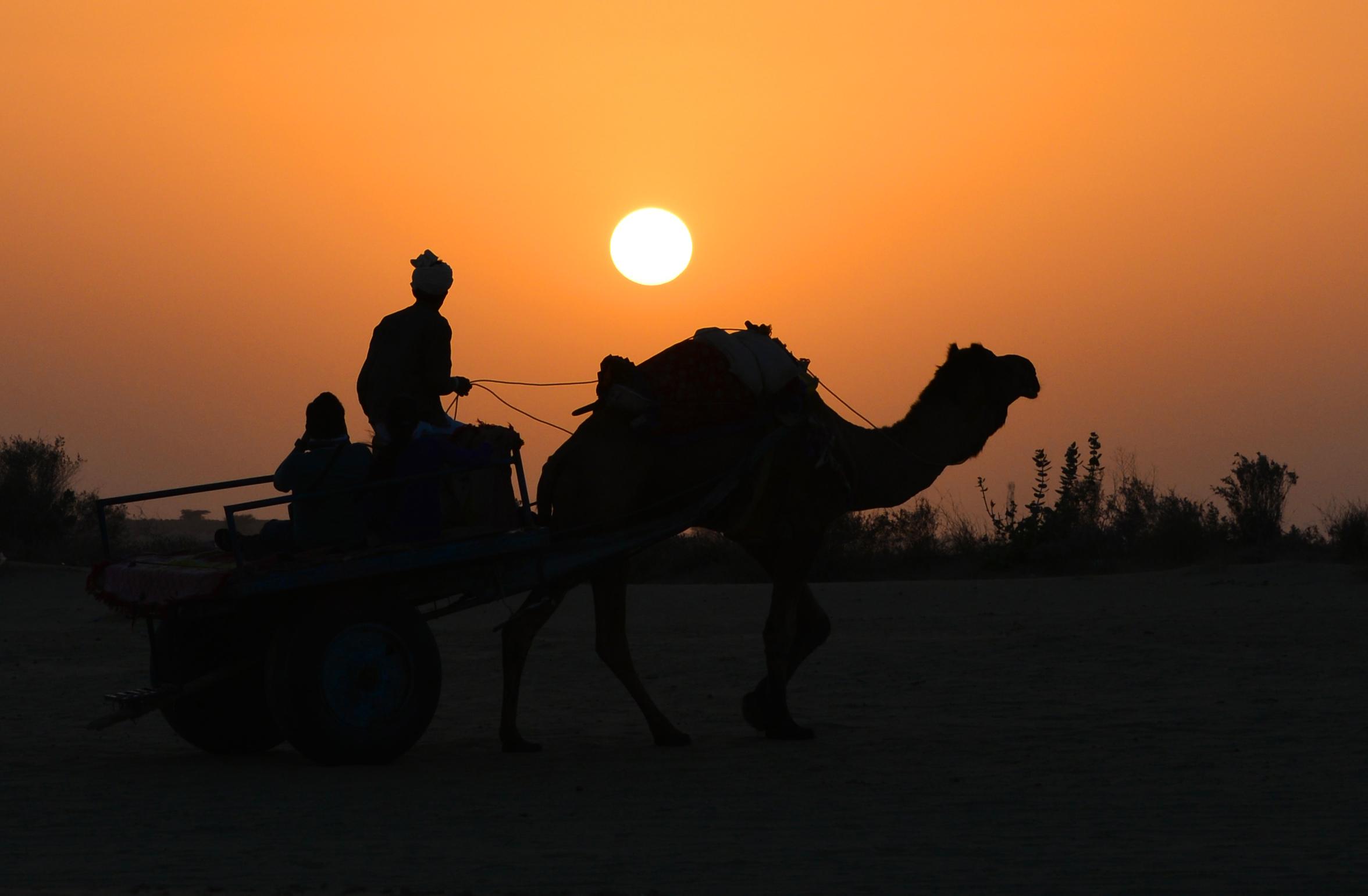 top thar desert sunset - photo #16