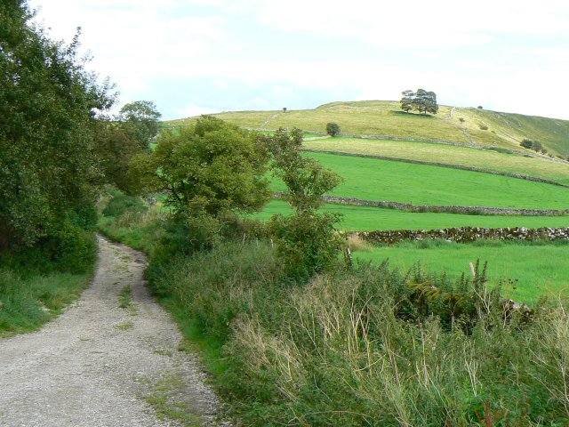 Track near Stanshope - geograph.org.uk - 942741