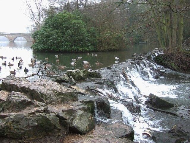 Weir, Clumber Park - geograph.org.uk - 653654