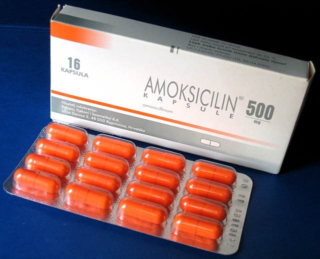 DailyMed - CIPRODEX - ciprofloxacin and dexamethasone