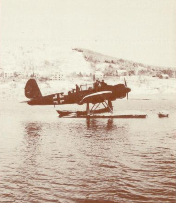 Aradi 196 at Sørneset