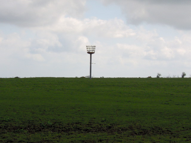 Beacon on Okeford Hill - geograph.org.uk - 163517