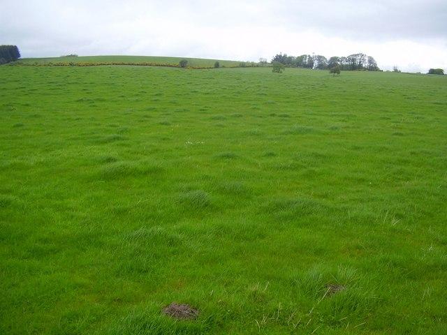 Filebig grassy field geograph 1295325g wikimedia filebig grassy field geograph 1295325g voltagebd Images