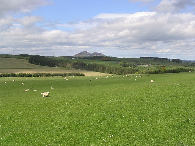 File:Border Farmland - geograph.org.uk - 442481.jpg
