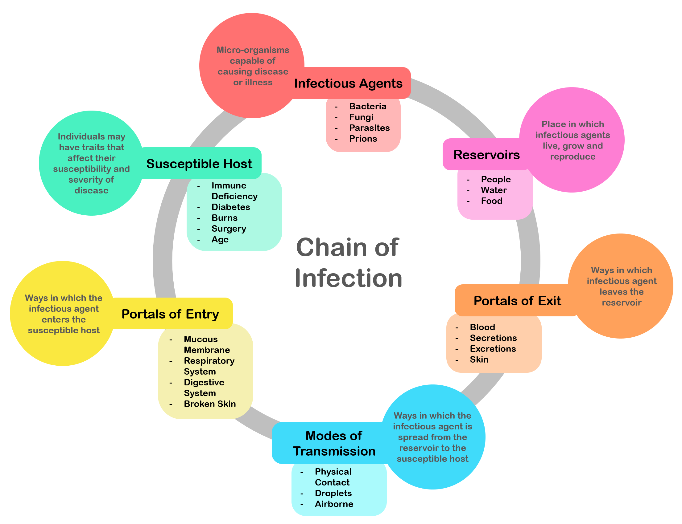 chains of infections Description: the chain of infection has 3 main parts a reservoir such as a human and an agent such as an amoeba the mode of transmission can include direct contact, droplets, a vector such as a mosquito, a vehicle such as food, or the airborne route.