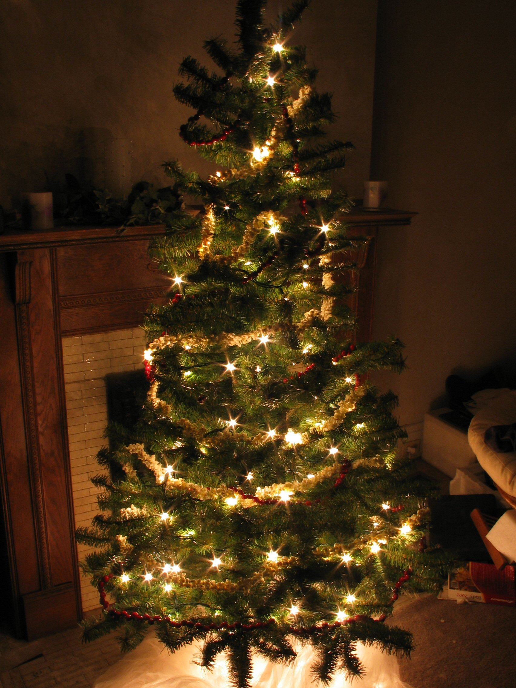 File:Christmas tree at night.jpg